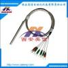 双支铂电阻pt100 双支热电阻 温度传感器