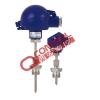 热电阻温度计 TR55 热电阻温度计 弹簧压缩式末端